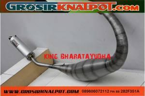 king-bharata3